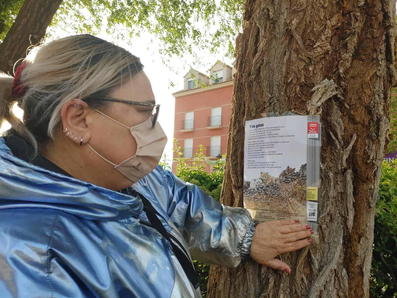 Pegada de páginas de libros en los árboles de la Avenida de Alcázar por el Día del Libro 8