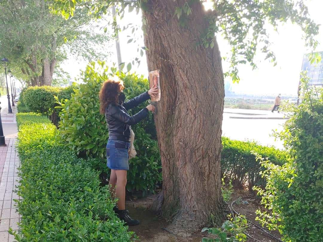 Pegada de páginas de libros en los árboles de la Avenida de Alcázar por el Día del Libro 9