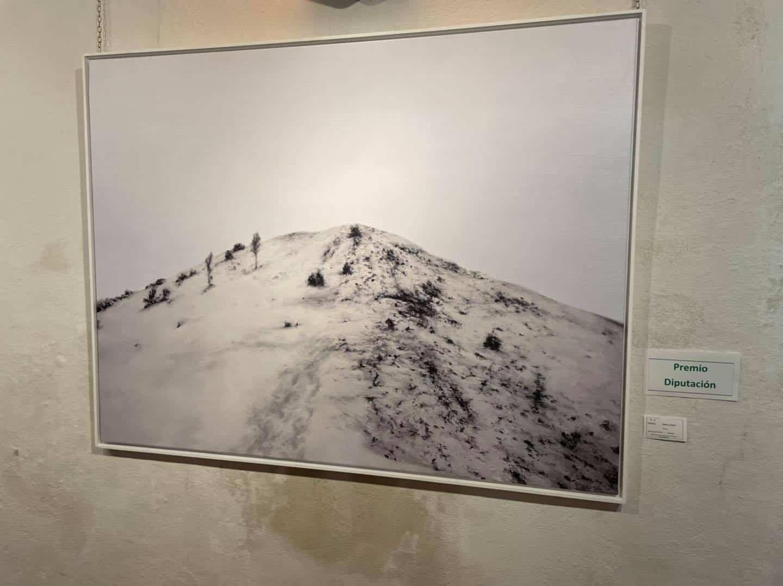 """Inauguración de la exposición del XXXVIII Certamen de Pintura """"Jesús Madero"""" 22"""